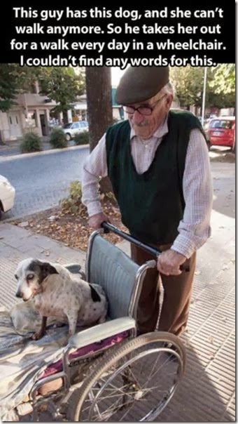 awesome-pet-owners-2