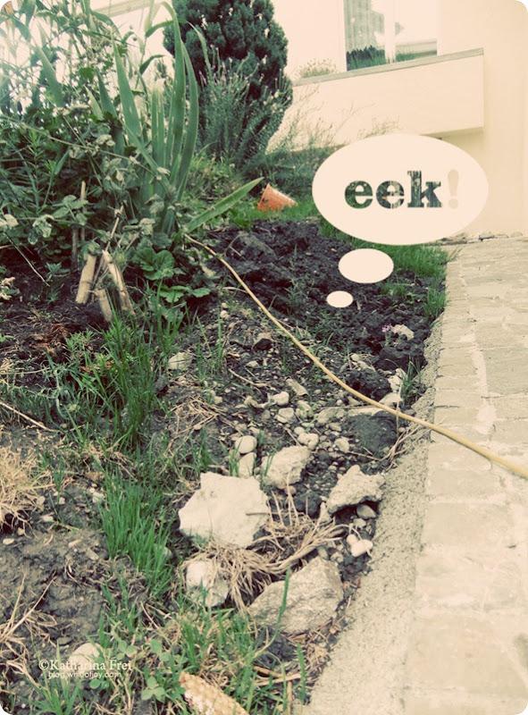 Eek10