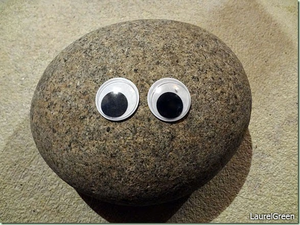thing-a-day-2013-16-googly-eyed-rock
