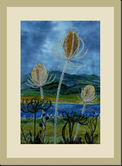 teasels 001
