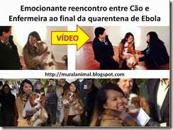 Emocionante reencontro entre Cão e Enfermeira ao final_thumb[1]