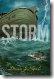 Storm, by Donna Jo Napoli