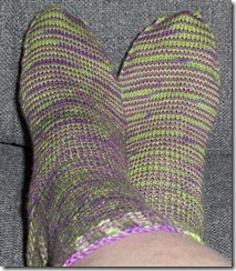 Lornas Laces Jungle Stripe complete