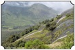 MNR_315_DSC0088_www.keralapix.com