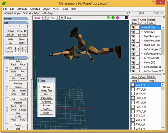 Exported pose in Metasequoia