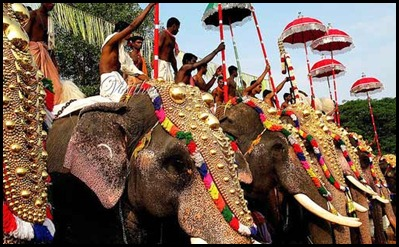 Thrissur Pooram Elephants