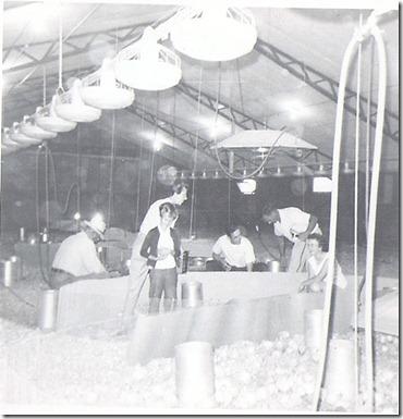 aug 68