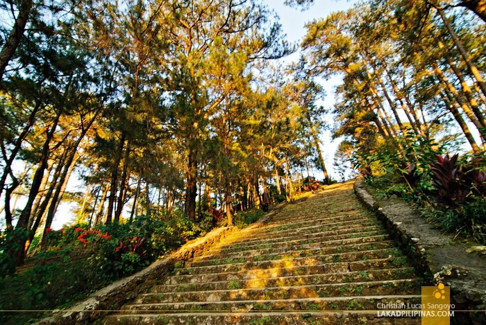 100 Steps at Baguio City's Wright Park