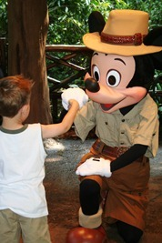 Magic Kingdom & Animal Kingdom 246