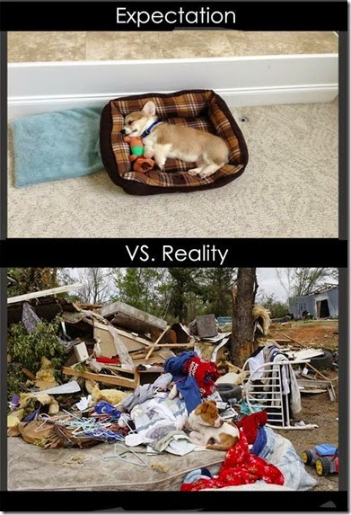 expectations-reality-014