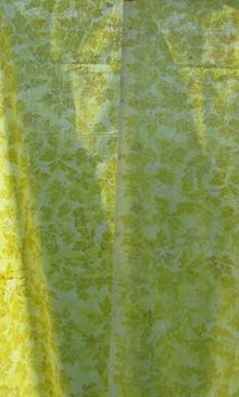 Unbekanntes Waldkraut Eco Print im Sonnenlicht