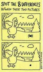 Spot the 8 Differences