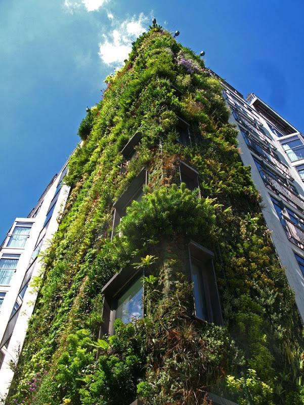 vertical garden by patrick blanc 5