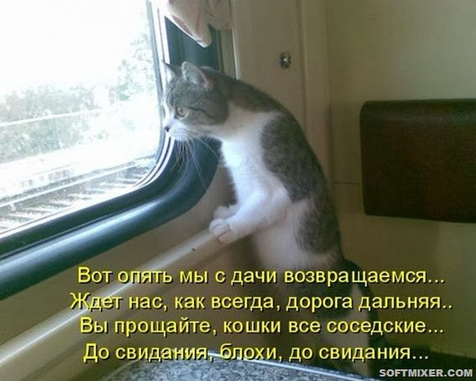 kotomatrix_0591