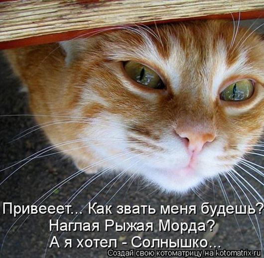 78628367_kotomatrix_044