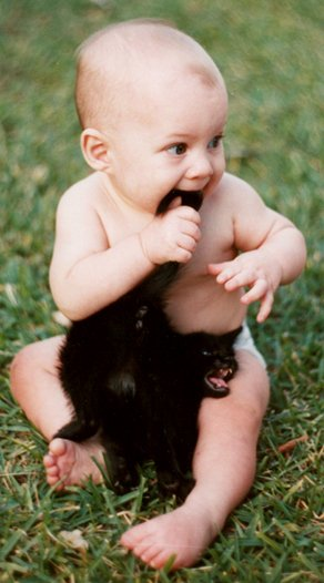 Image of a baby chewing on a cats tail