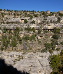 Cave dwellings from 1100AD in Walnut Canyon