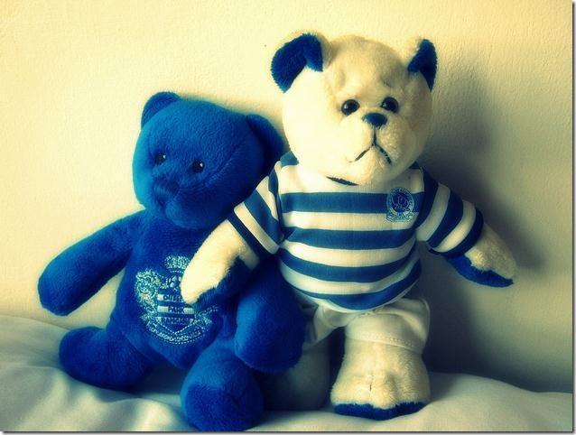 QPR bears