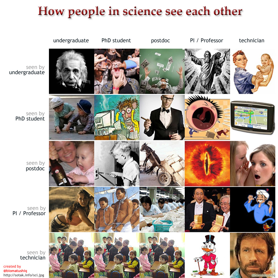 How people in science see each other