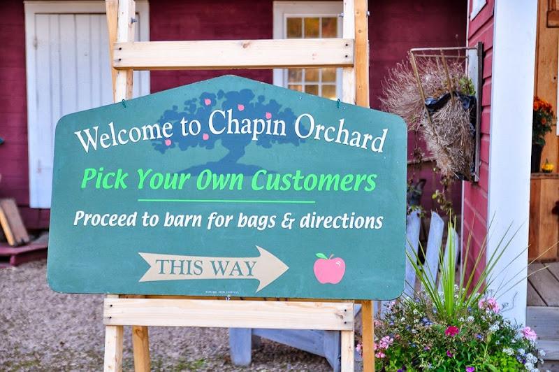 Chapin orchard-8889