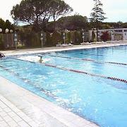 swim_03.jpg