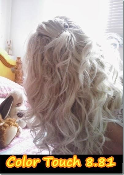 cabelo perfeito - tonalizado com 8.81