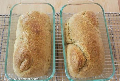 Sourdough Toasted Cornmeal Bread