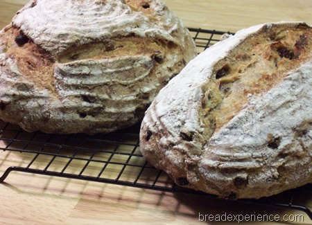 sourdough-rye-raisins-walnuts 042
