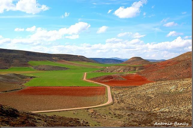 1A Tierras de Molina de Aragon DSC_0125X