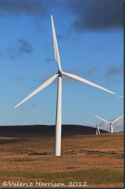 3-windfarm