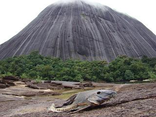 Colombia, Parques y Reservas: Cerros de Mavecure