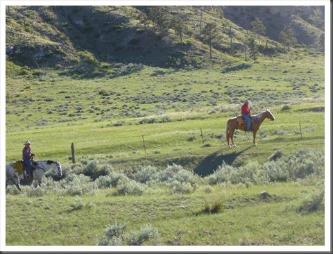 montana 2013 trail 624
