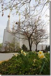 '13 DC Temple 1