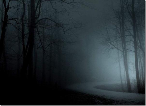 Florestas sombrias (13)