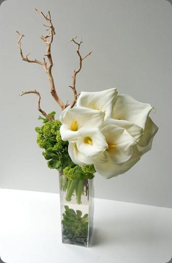 215876_216189211740333_159860124039909_898366_2019410_n  seed floral