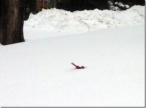 buried-cardinal