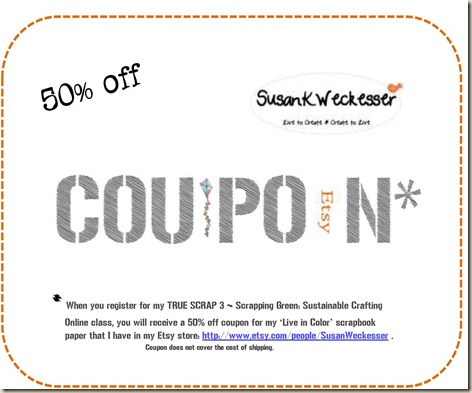 Etsy coupon for ts3