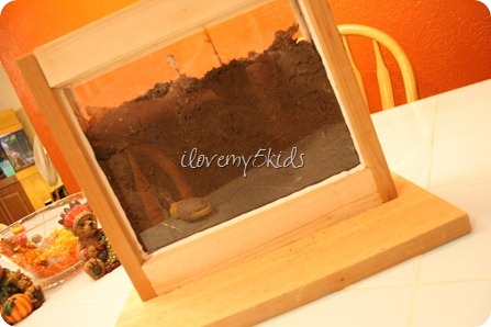 Ant farm made from picture frames