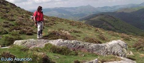 Posible menhir en las laderas de Peña Alba
