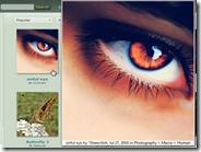 Addon Firefox e Chrome per ingrandire foto dei siti internet con il puntatore del mouse