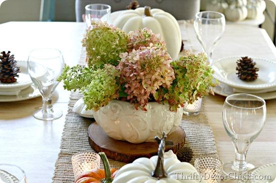fall hydrangeas