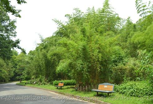 Glória Ishizaka -   Kyoto Botanical Garden 2012 - 96