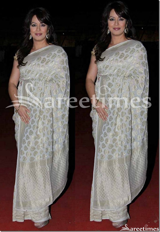 Mahima_Chaudhary_White_Saree