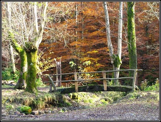 Lantz otoño 117