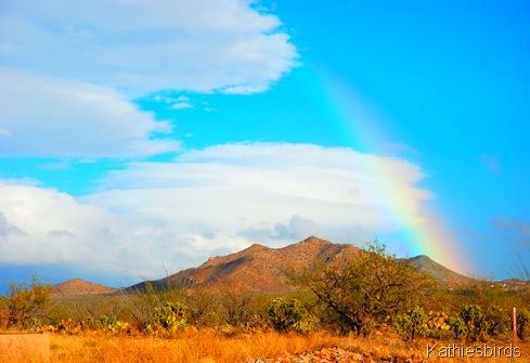 12. rainbow-kab