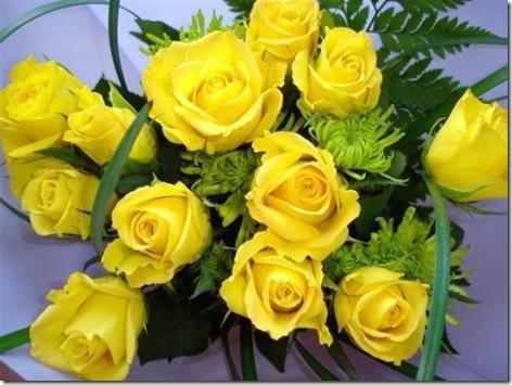 flor día del amor (37)