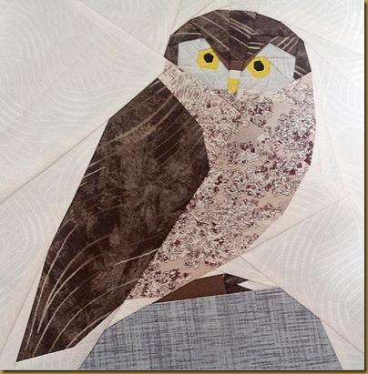 owl test