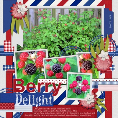 Romajo - Dutch Delight - Berry Delight