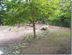 2011.07.26-061 nandou