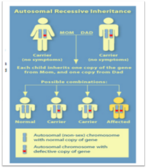 autosomal recessive. DISORDERSpng